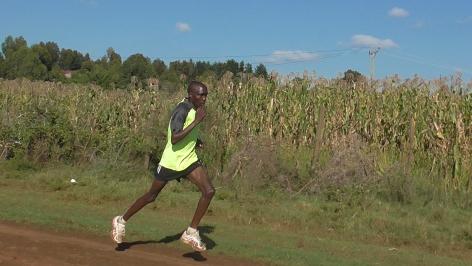 Amos in Training